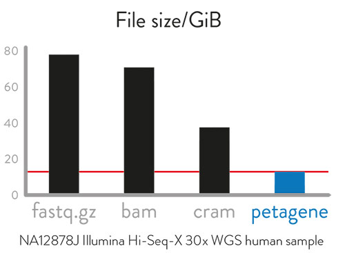 Table showing size of files created using Fastq.gz, bam, cram and PetaGene compression