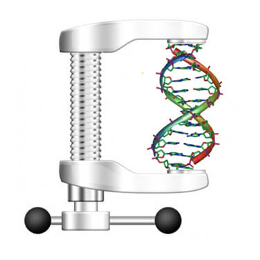 dna-compression